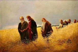 Reflexión del Evangelio – 19  de enero